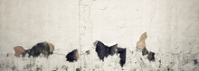 Old Wall With Moldy Peeling Wh...