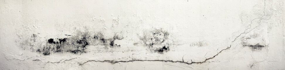 Old Wall with Moldy Peeling...