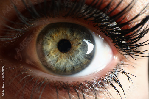 Fototapeta Human green eye supermacro closeup background obraz