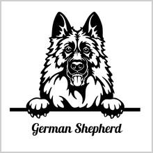 German Shepherd - Peeking Dogs...
