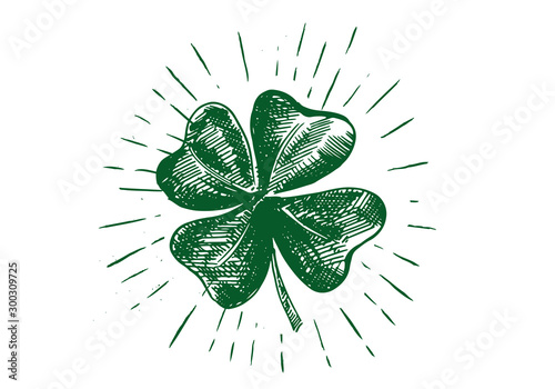 Cuadros en Lienzo Patrick day. Clover, hand drawn illustration.