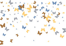 Festive Butterfly Confetti Background. Frame Vector Pattern Texture For Holiday, Postcard, Poster, Carnival, Banner, Birthday And Children's Parties. Butterfly Cover Mock-up. Wedding Butterfly Layout
