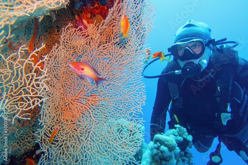 Man scuba diver and beautiful sea fan (gorgonia) coral and red coral fish Anthias close up Canvas Print
