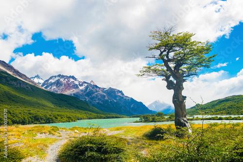 Laguna Nieta lake in Los Glaciares National park in Argentina