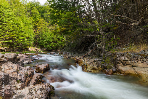 Fast rapids in Tierra del Fuego National Park in Argentina