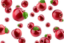 Falling Red Apple Isolated On ...