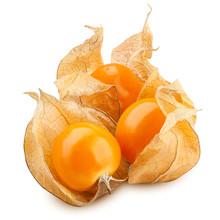 Cape Gooseberry, Physalis Isolated On White Background, Clipping Path, Full Depth Of Field