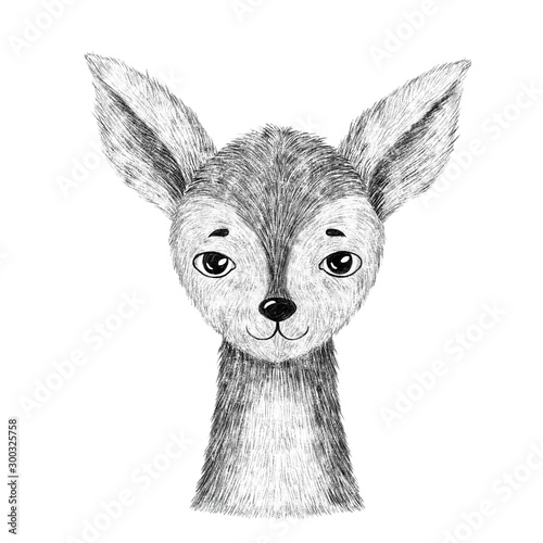Photo Baby deer. Hand drawn animal. Isolated
