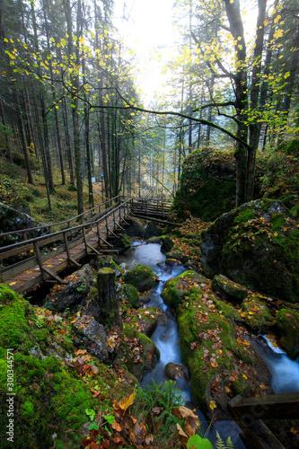Naklejka premium Drewniany most nad kaskadą przewraca się nad omszałymi skałami w Myrafalle, niedaleko Muggendorf w Dolnej Austrii