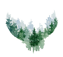 Watercolor Pine Trees Illustra...