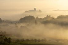 Haze Over The Vineyards Near G...