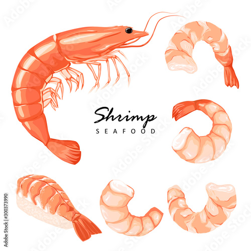 Collection boiled shrimp, shrimps without shell, shrimp meat Fototapet