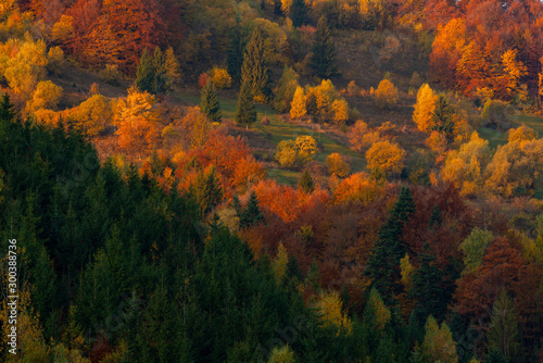 Vászonkép  Autumn foliage trees in the mountains Meadow with haystack