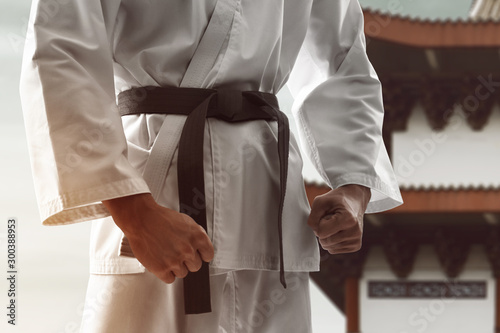 Karate martial arts fighter training