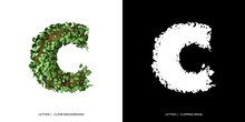 Letter C Lowercase With Tree S...
