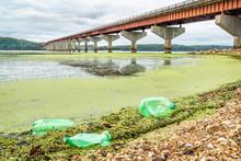Plastic Bottle Trash On River Shore