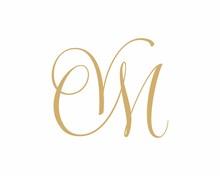 VM MV Letter Logo Icon 002