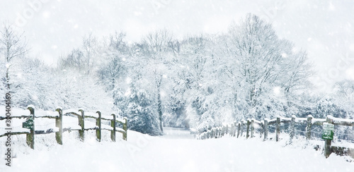 Obraz Path through English rurual countryside in Winter with snow in heavy snow storm - fototapety do salonu