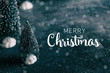 Merry Christmas banner with text, close up of bottlebrush trees and snow for holiday.