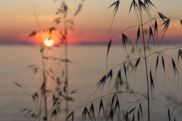 Panel Szklany Wschód / zachód słońca Sunset in Croatia