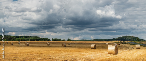 Montage in der Fensternische Dunkelgrau A typical natural landscape: yellow fields and dry haystacks. Panoramic view. Daytime countryside landscape under cloudy sky in Bohemia, Czech Republic, Europe