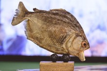 Statue Of An Edible Fish With ...