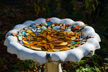 Birdbath With Colored Tiles Co...
