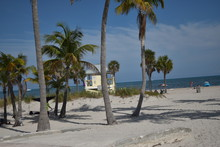 Crandon Park In South Florida,...