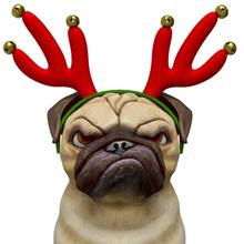 Dog Pug Cartoon With A Christm...