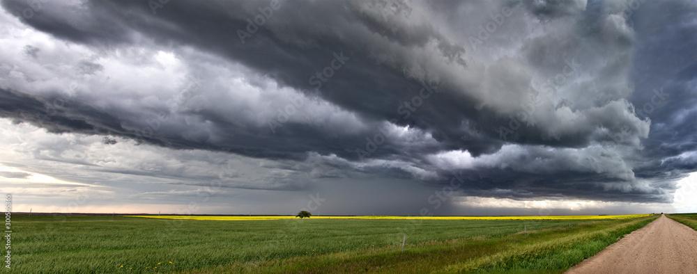 Fototapeta Prairie Storm Clouds Canada