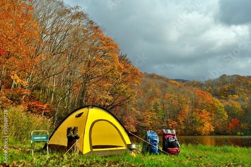 Obraz 秋・湖畔のキャンプ - fototapety do salonu