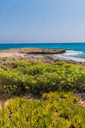 Fotografie, Obraz  A typical view in Agia Napa in Cyprus