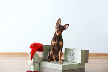 Cute Toy Terrier Dog Christmas Gifts Indoors
