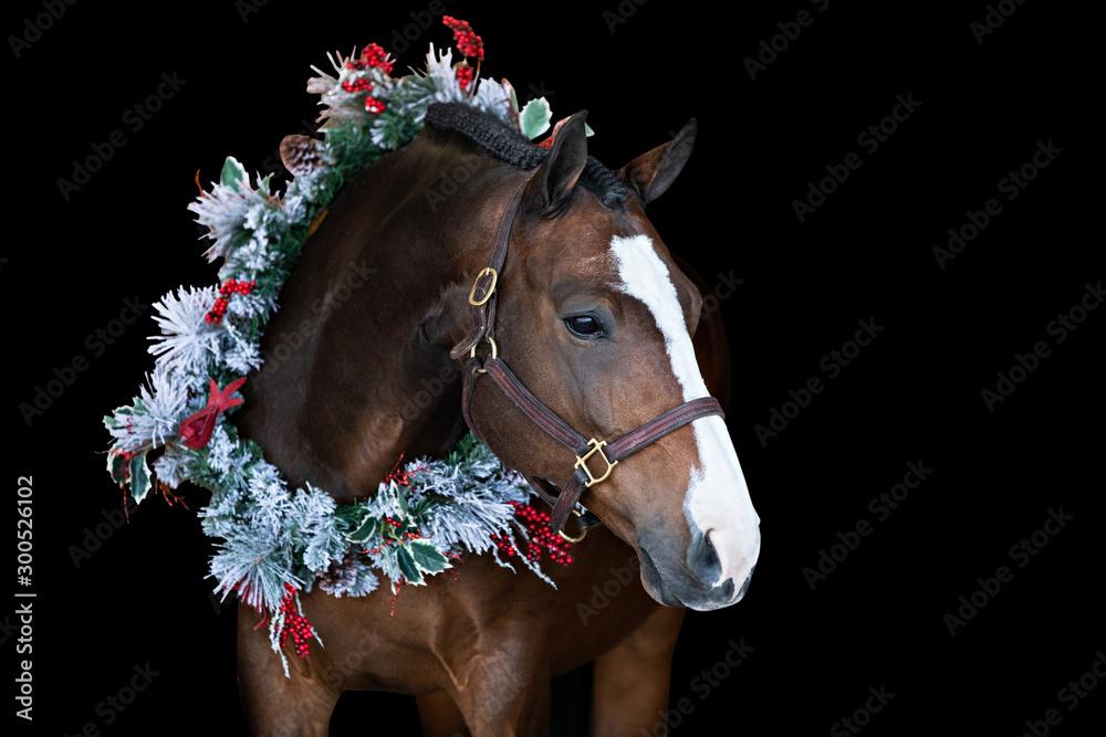 Fototapety, obrazy: Christmas Horse