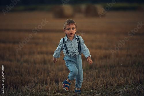 Cute little boy on the corn field