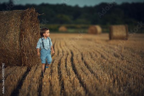 Cute little boy walking among the sheafs - countryside shot