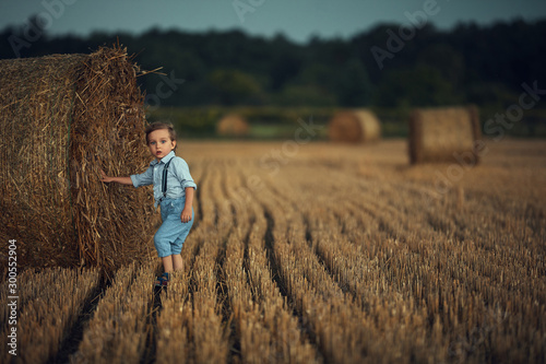 Portrait of an adorable boy posing next to the sheaf