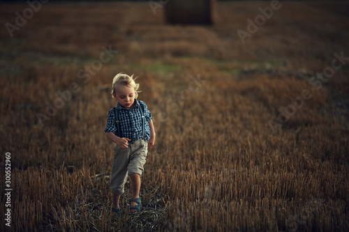 Adorable little boy running on the corn field