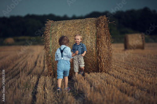 Portrait of cheerful brothers playing on a corn field