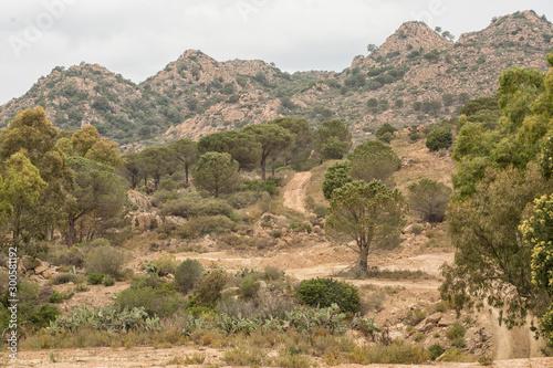 Foto op Plexiglas Zandwoestijn Landscape in Gran Canaria