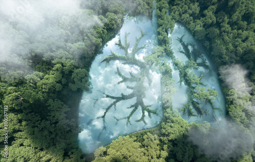 Obraz Green lungs of planet Earth. 3d rendering of a clean lake in a shape of lungs in the middle of  virgin forest. Concept of nature and rainforest protection, nature breathing and natural co2 reduction. - fototapety do salonu