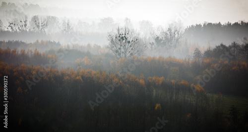 Jesienny Poranek Na Warmii i Mazurach - 300590372
