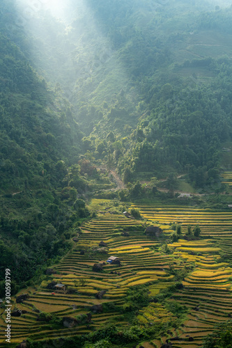 Recess Fitting Rice fields Terraced rice field
