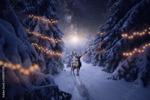 Foto auf Leinwand Hirsch Ein Hirsch mit Weihnachtsdekoration steht im Winterwald