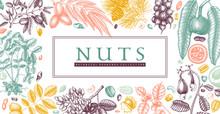 Hand Drawn Nut Wreath Design. ...