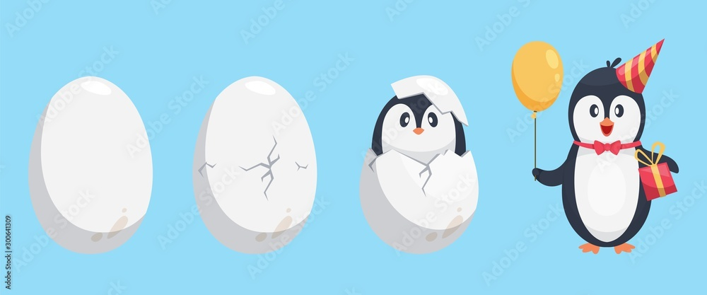 Fototapety, obrazy: Penguin egg. Birth stages of penguin. Cute cartoon animal newborn vector illustration. Broken egg bird, nature polar and adorable newborn