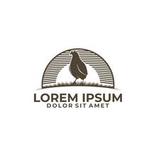 Quail Bird Emblem Or Badge Logo Template Isolated In White Monogram Illustration