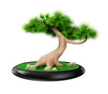 Decorative Bonsai Tree Pine In...