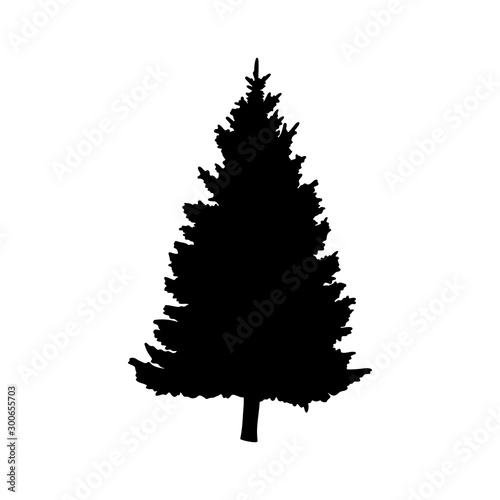 Isolated tree on the white background Wallpaper Mural