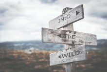 Into The Wild Signpost. Sign, ...